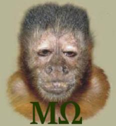 Profilový obrázek Malpa Omega