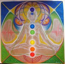 Profilový obrázek Homo Sapiens Meditans