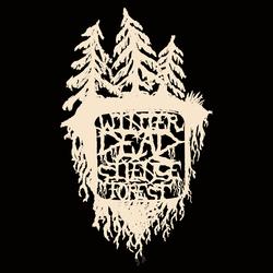 Profilový obrázek Winter dead silence forest