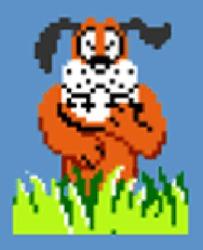 Profilový obrázek Duck Hunt Dog