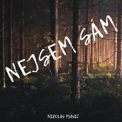 Profilový obrázek Nikolas Music