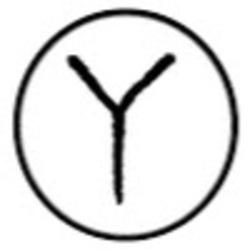 Profilový obrázek Ypsilon