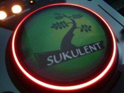Profilový obrázek sukulent sound system