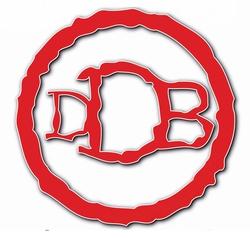 Profilový obrázek David Dragoun Band