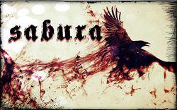Profilový obrázek Sabura