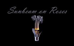 Profilový obrázek Sunbeam on Roses