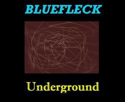 Profilový obrázek Bluefleck