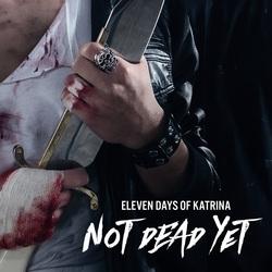 Profilový obrázek Eleven Days of Katrina