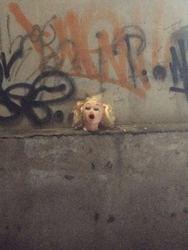Profilový obrázek Destrukce Papri