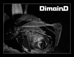 Profilový obrázek Dimaind-Nr