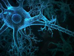 Profilový obrázek Motion Sickness