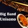 Profilový obrázek Bigband Unisono