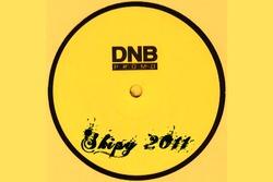 Profilový obrázek DnB 2011