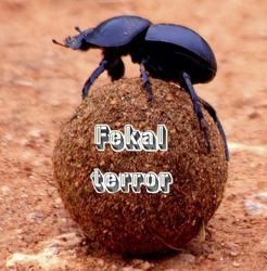 Profilový obrázek Fekal Terror