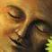 Profilový obrázek Seventh Passion