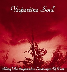 Profilový obrázek Vespertine Soul