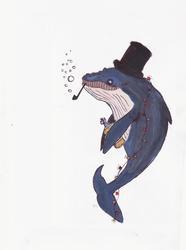 Profilový obrázek Jolly Whale