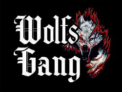 Profilový obrázek Wolfs' Gang