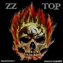 Profilový obrázek Zz top revival