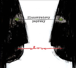 Profilový obrázek Slunovratovy paprsky aneb kongruence indukovaná homomorfismem