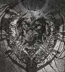 Profilový obrázek Dirty Old Dogs