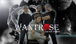 Profilový obrázek Wantrose