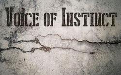 Profilový obrázek Voice of Instinct