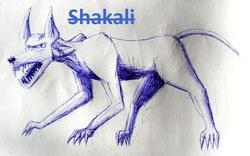 Profilový obrázek Shakali