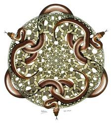 Profilový obrázek The Serpents