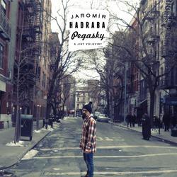 Profilový obrázek Jaromír Hadraba