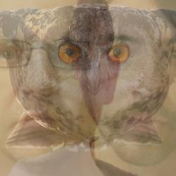 Profilový obrázek OwL