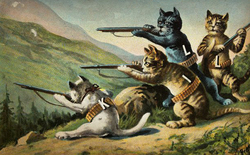 Profilov obrzek Killing tom-cats