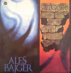 Profilový obrázek Vigor