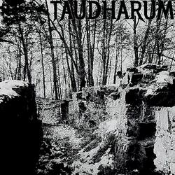 Profilový obrázek Taudharum