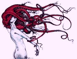Profilový obrázek Něžný Octopus