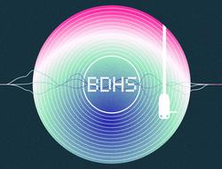 Profilový obrázek BDHS - Blikajúci Dychový Hudobný Systém