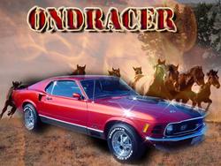 Profilový obrázek Ondracer