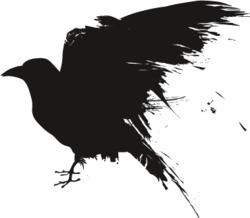 Profilový obrázek Socalled