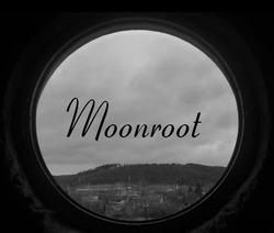 Profilový obrázek Moonroot
