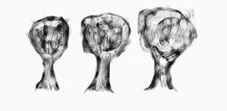 Profilový obrázek Three Free Trees