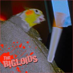Profilový obrázek Bigloids