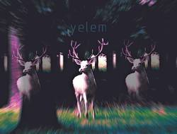 Profilový obrázek Yelem