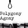 Profilový obrázek Polygony Agony