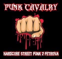 Profilový obrázek Punk Cavalry