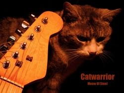 Profilový obrázek Catwarrior