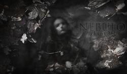 Profilový obrázek Nebulo