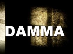 Profilový obrázek Damma