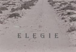 Profilový obrázek Elegie
