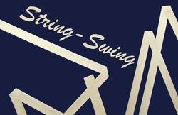 Profilový obrázek String-Swing