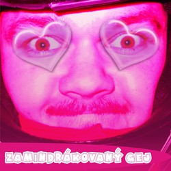 Profilový obrázek Zamindrákovaný Gej